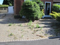 Driveway Cleaning and Sealing Somerset image